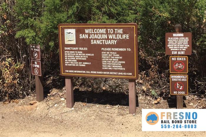 San Joaquin Bail Bonds